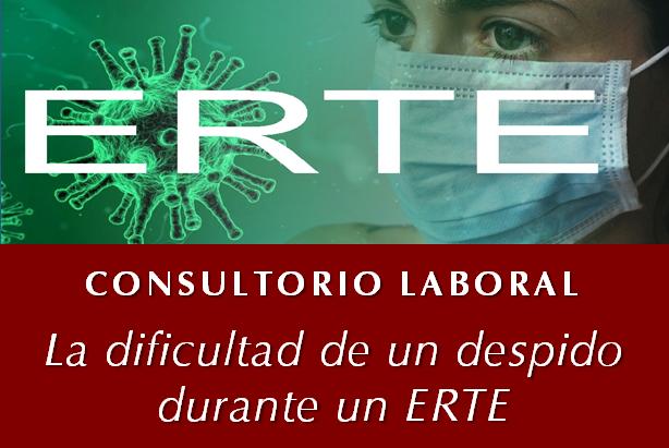 https://esel.es/wp-content/uploads/2021/01/ERTE.png